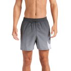 MEN'S BEACH SHORTS NIKE COLOR F